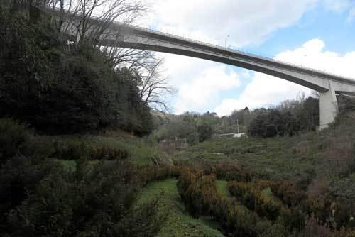 200315大橋