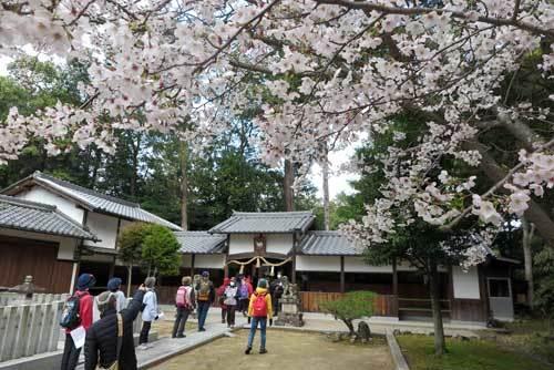 200402八幡神社