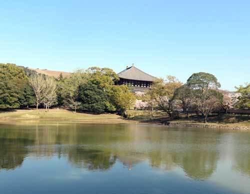 200406大仏池