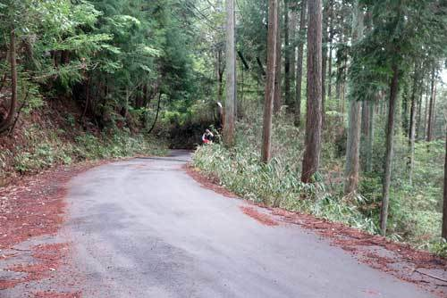 200421舗装道路2