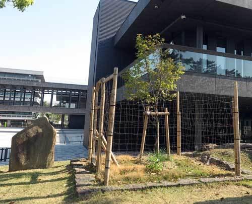 200430東円堂跡全体