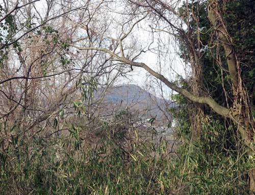 200219畝傍山