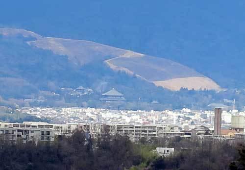 200308東大寺遠望