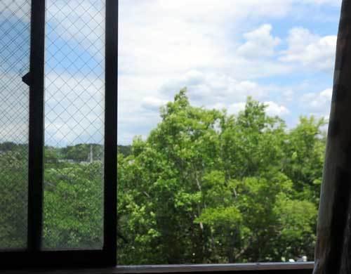 200523窓から風