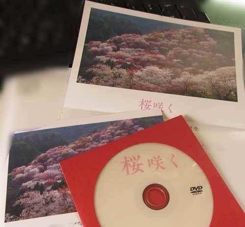 200615桜咲く