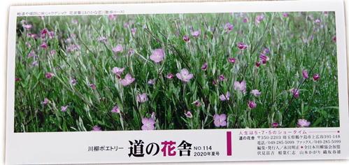 200718道の花舎