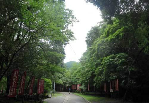 200730醍醐寺境内