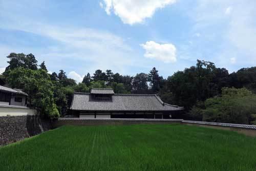 200809東大寺