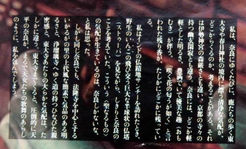 2008東大寺幻想1