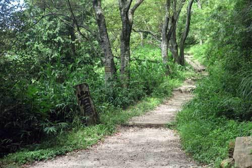 200812岩屋峠
