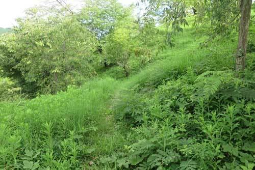 200812史跡の丘