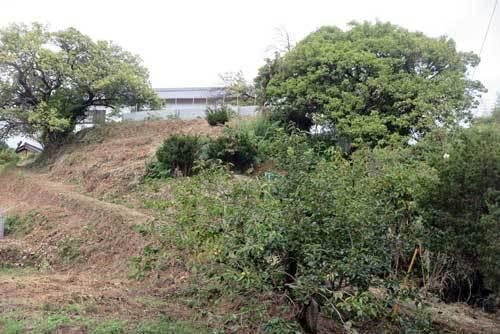 200903竹内街道へ