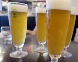 200906クラフトビール