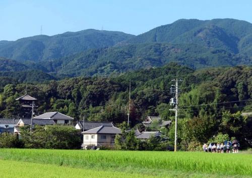 200826傘の列2