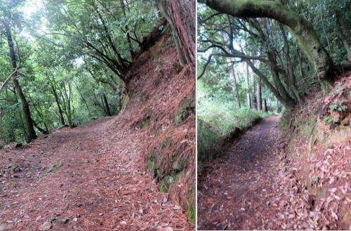 200927登山道