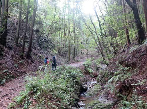 200927登山道3