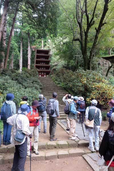 201018五重塔