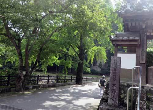 201013大野寺