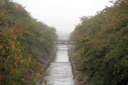 201020佐保川3