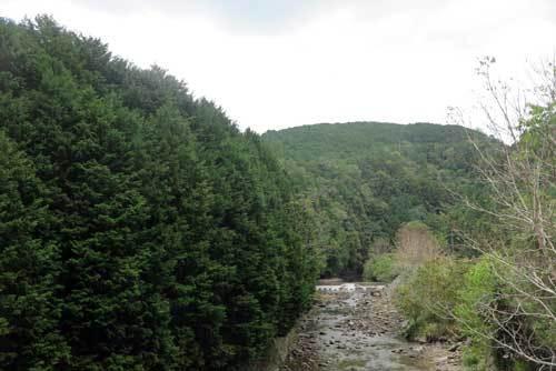 20101013県道沿い
