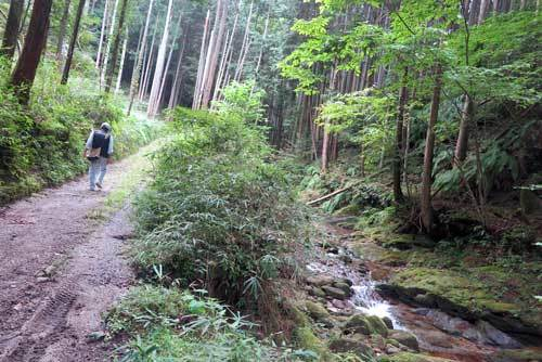 201013東海自然歩道