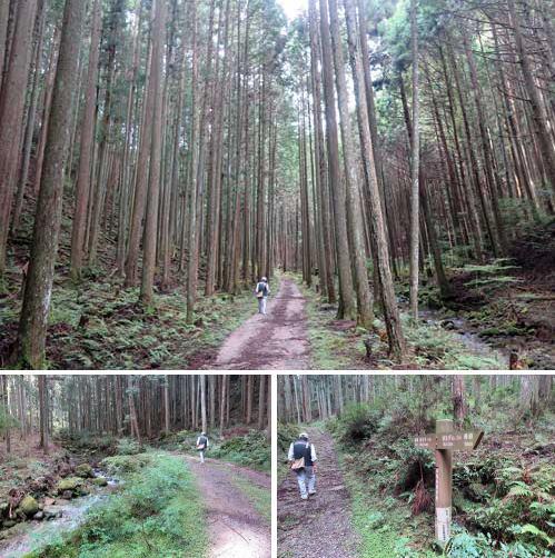 201013東海自然歩道2