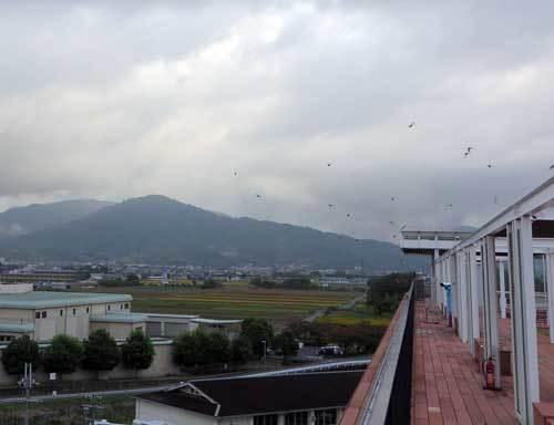 201023三輪山2