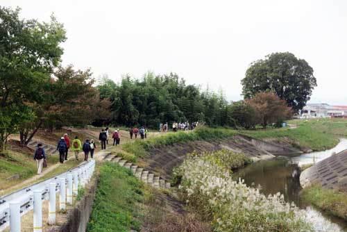 201029寺川沿い