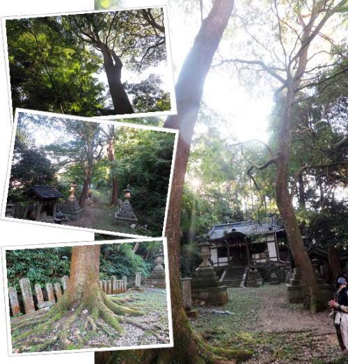 201106八幡神社
