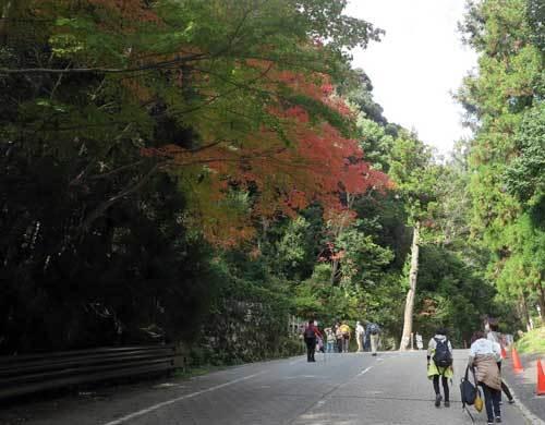 201112松尾寺へ4