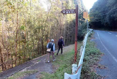 201115山道へ