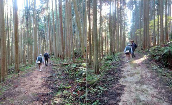 201115山道2