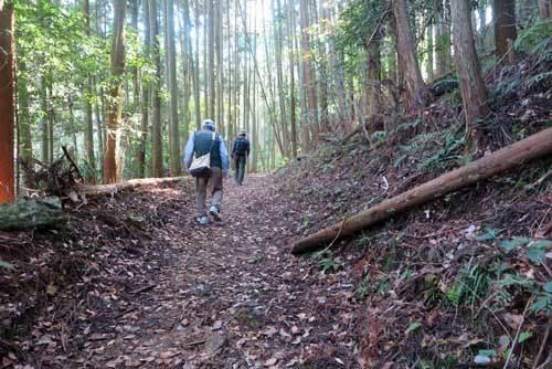 201115山道