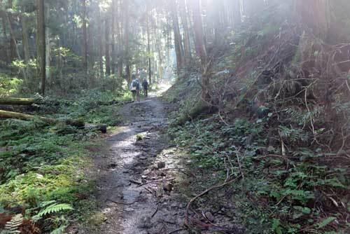 201115山道4