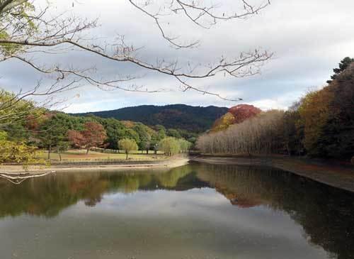 201119荒池