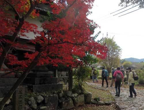 201122小嶋神社から
