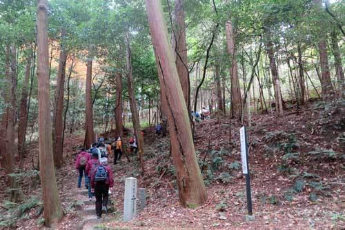 201203山の辺の道