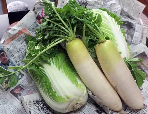 2012野菜