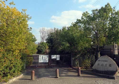 201223杉山古墳