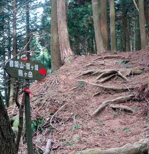 210212熊ヶ岳へ