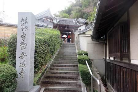 210325安遊寺