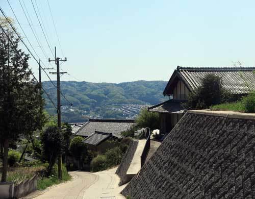 210421矢田丘陵2