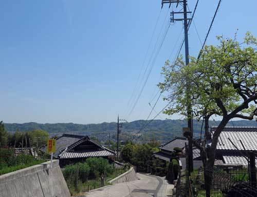 210421矢田丘陵