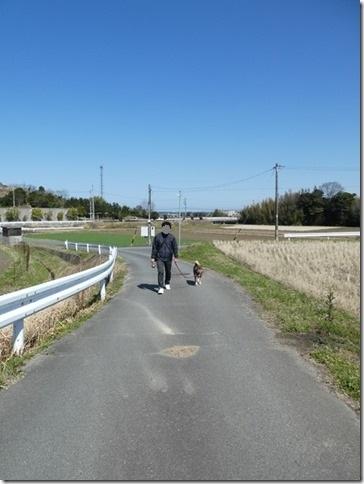 20200312あおぞら春散歩-01