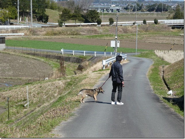 20200312あおぞら春散歩-09