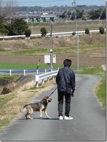 20200312あおぞら春散歩-12