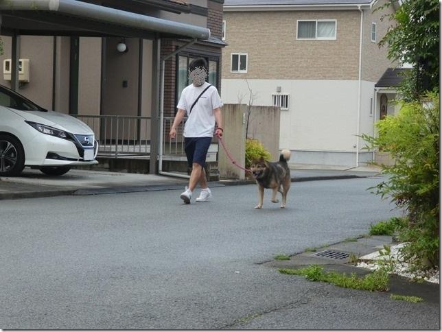 20200523早朝の朝散歩カムイ編-01
