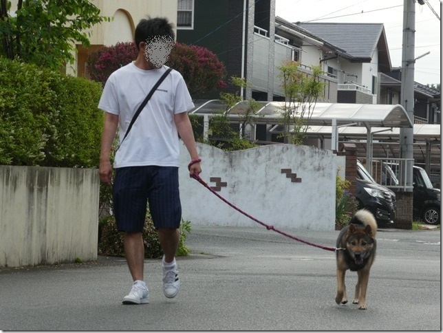 20200523早朝の朝散歩カムイ編-02
