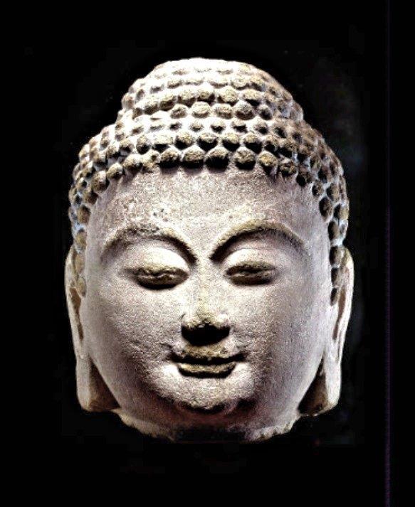 228天龍山石窟⑥:2008年オークションに出品された天龍山石窟第10窟西壁、如来坐像頭部