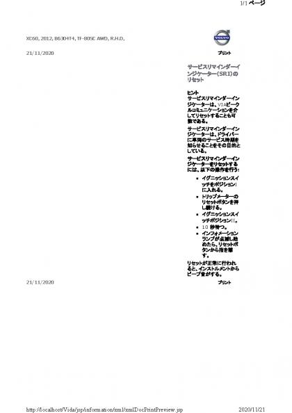 xmlDocPrintPreview (33)